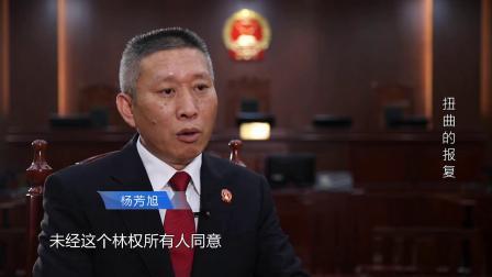 中国教育电视台《法治天下》栏目播出松溪办案专题片
