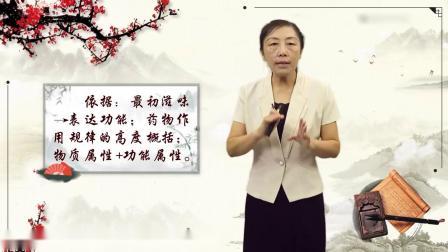 纯中药焕颜霜效果视频 中药材种植技术田间培训 对中药