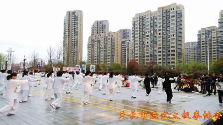 天长市陈式太极拳协会表演《二十四式简化太极拳》
