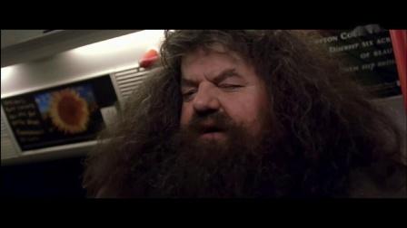 于洋老师讲哈利波特与魔法石6