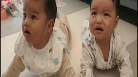 双胞胎孙子远王睿航半岁留影集锦2021