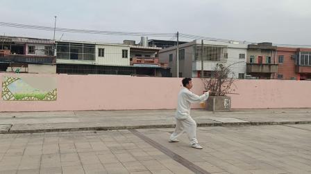 关金太极拳林秋武演练:42式杨氏太极剑