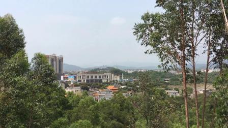 2021 0415广东省 陆丰市。