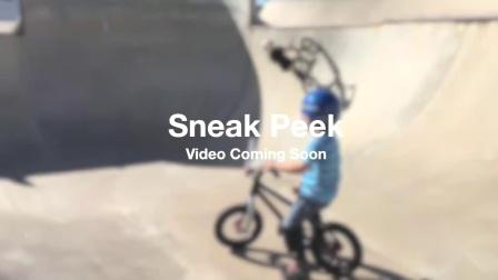 FRW辐轮王全球第一学生自行车品牌排行榜前十名儿童自行车买哪个牌子好