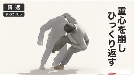 柔道技术动画
