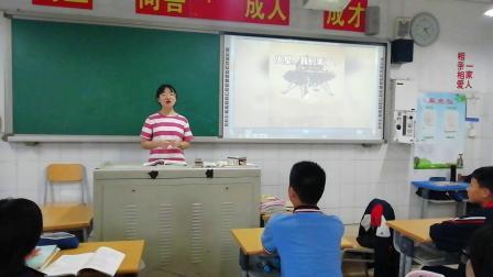 石家庄桥西区 张子怡 2018011191 初一  憧憬美好集体