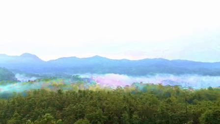 百丈岩的晨雾