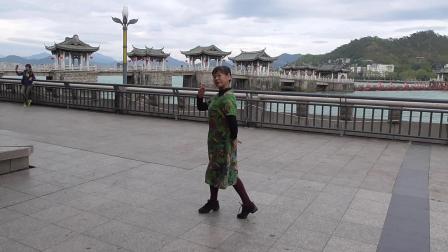 江南柳 ——摄于广东潮州广济桥2019.12