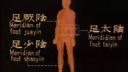 中国针炙学系列录影带 16