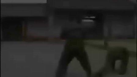 军体拳分解教学-第一部