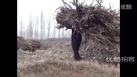 【拍客】老父拾柴盼在浙江打工的儿子回家过年