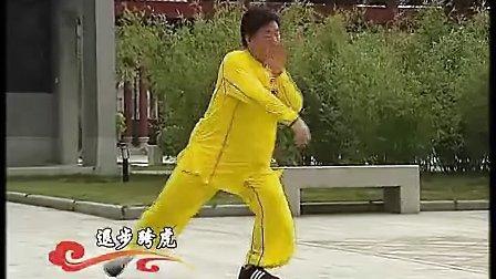 陈式太极拳国标五段单练套路