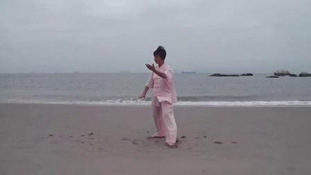 正宗杨氏太极拳(杨澄甫传统太极拳91式)