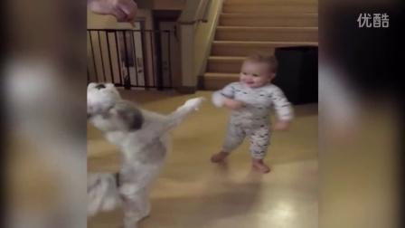 【冯导】婴儿搞笑模仿狗狗转圈圈