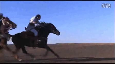 奔跑中的阿拉伯马