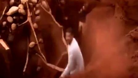 十吨水泥注入蚂蚁洞穴中,一个月后开挖!这场面被震撼了