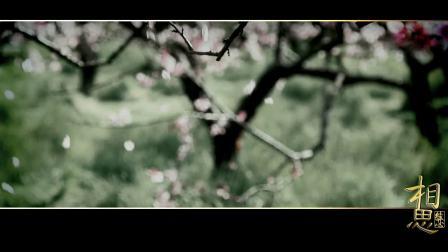 【钟奕儿】【肖杨博涵】最肯忘却古人诗,最不屑一顾是相思