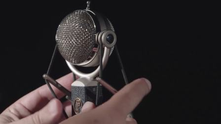 BLUE:Dragonfly/蜻蜓话筒-适合人声、声学和鼓的麦克风