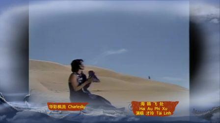 海鸥飞处彩云飞(越南中越语翻唱台湾同名电影歌曲)Hải Âu Phi Xứ