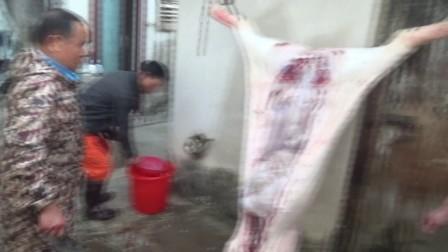 杀过年猪(2018杨梅坑春节)