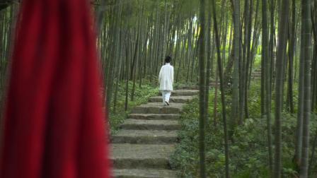 《秦淮河》宣传片