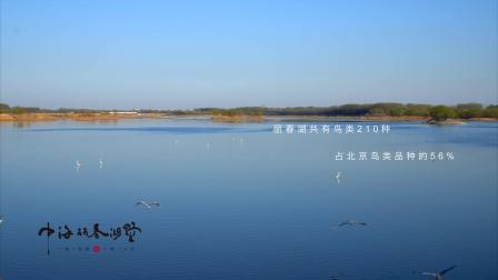 中海丽春湖墅展示片
