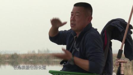 钓鱼人应该养成的一个好习惯 听听大毛老师怎么说