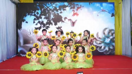 2019.5.31 智慧岛幼儿园六一文艺晚会