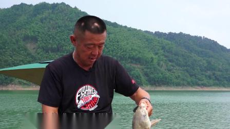 再次来到响洪甸刚下竿的大毛老师便钓获一尾 是不是水中的大物呢?