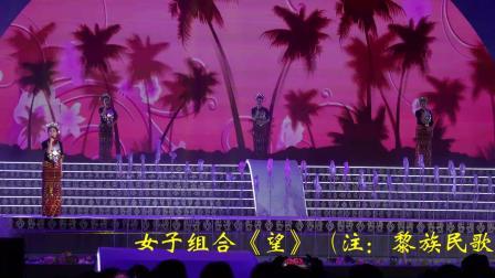七仙筑梦·魅力保亭——2019海南七仙温泉嬉水节大型民族歌舞晚会实况(一)