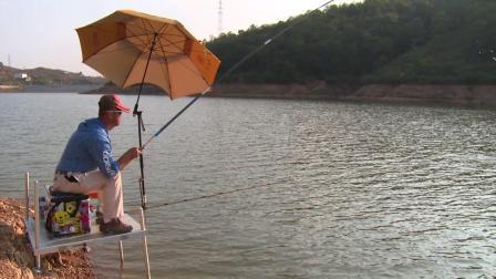 这样的钓点对钓鱼还是有点影响,差点就让这鱼跑了!