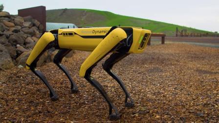 Tests Boston Dynamics' Spot Robot