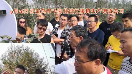 榆林市横山区果树管理技术培训