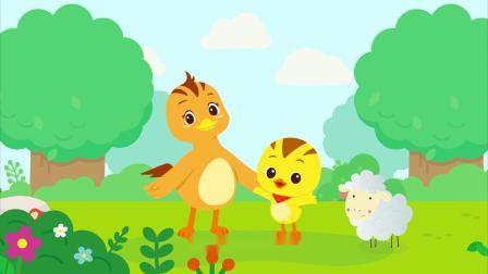 萌鸡小队趣自然小羊为什么看到人就跑?