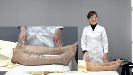 舒卿五行金针灸教学视频,针灸推拿培训班,中医针灸入门学习
