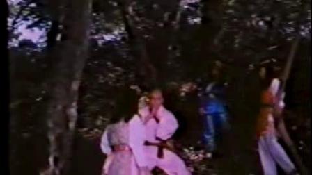 3个功夫女反派虐杀少林功夫和尚 最终恶有恶报全部被杀