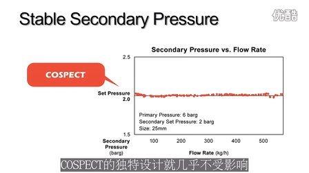 COSPECT:新一代的蒸汽压力控制设备