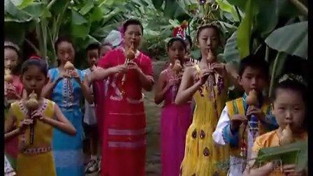 滿山葡萄红艳艳-葫芦丝