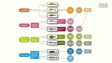 8千米深海鱼教你如何鉴别真假鳕鱼