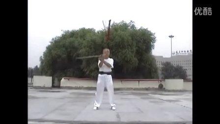 张世玉演练白鹤剑