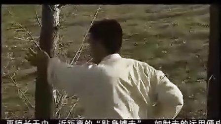 【侯韧杰 JKD 教学篇】之  咏春CCTV合集