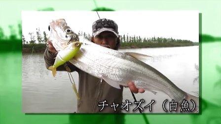 田辺哲男中國釣行---中國路亚发展形势 第2節