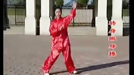 传统杨式太极拳108式全套演练