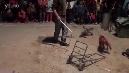 【拍客】实拍猴子拉车奔跑逗乐观众