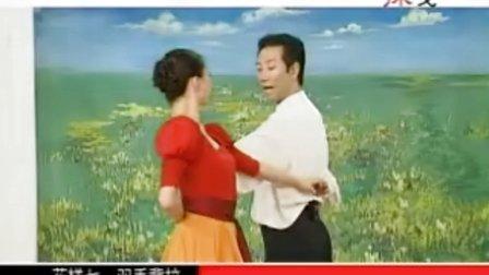 杨艺教跳探戈A