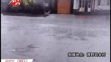 保定博野县程委镇突降冰雹 造成停电