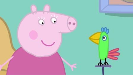 小猪佩奇第一季:鹦鹉波莉