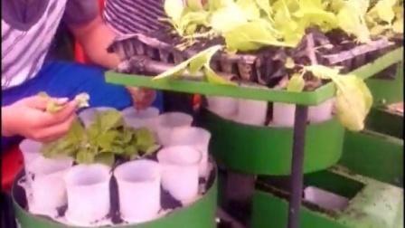 白菜移栽机 蔬菜移栽机 秧苗移栽机 玉米移栽机 (中国农业机械化网)起垄机