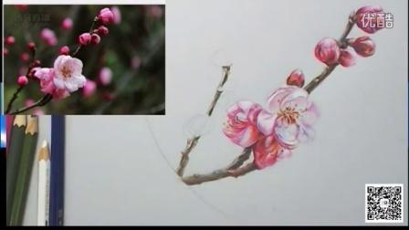 【艺达】桃花