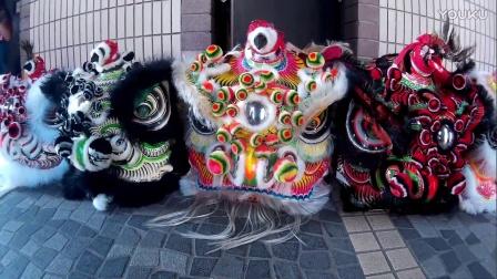 2017 香港龍獅節 - 屏山塘坊村獅隊 傳統獅頭